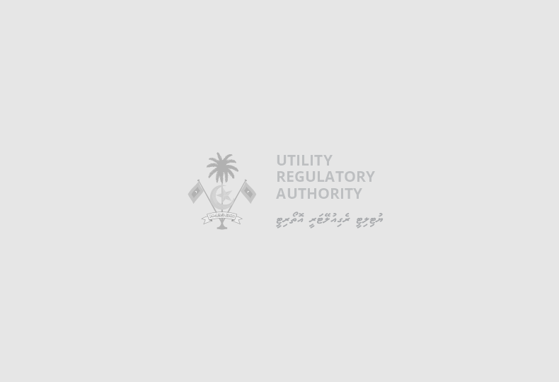 President establishes Utility Regulatory Authority